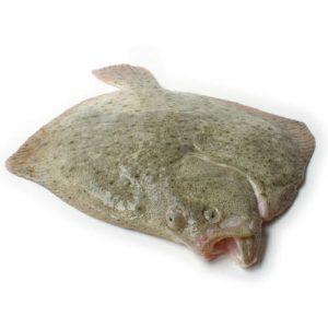 Rodaballo fresco de Pescados Paco