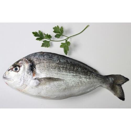 dorada comprar pescado online oviedo