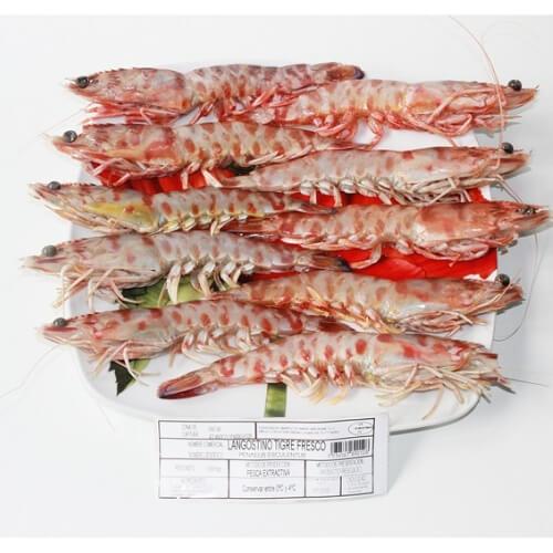 langostino tigre comprar pescado online oviedo